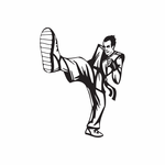 Martial Arts Wall Decal - Vinyl Decal - Car Decal - DC 007