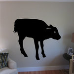 Calf Cow Looking Decal