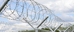 Barbed Wire Decals