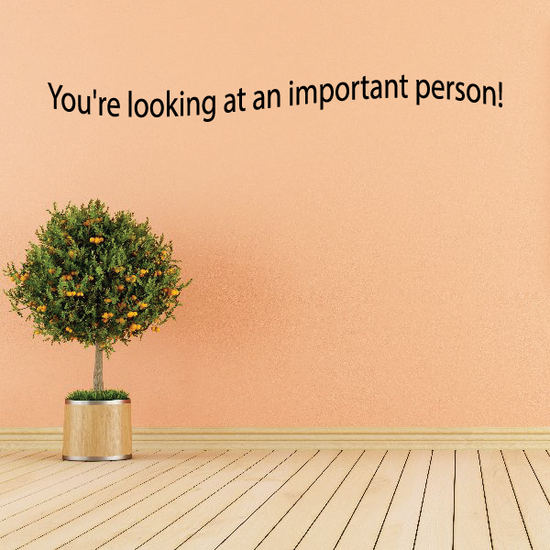 You are looking at an important person Wall Decal