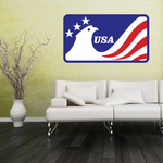 USA Eagle Sticker