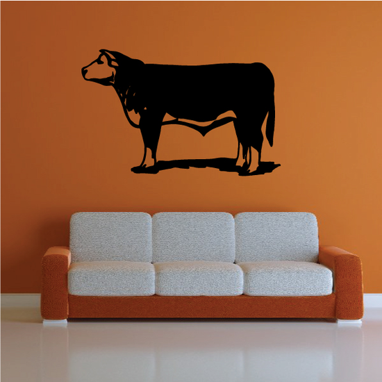 Angus Cow Standing Decal