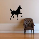 Show Horse Walking Decal