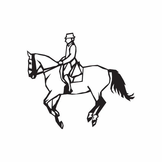 Equestrian Horse Wall Decal - Vinyl Decal - Car Decal - DC 003