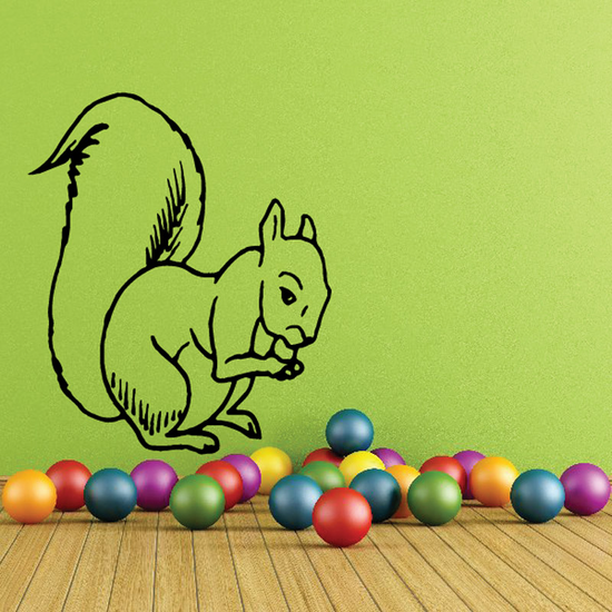Squirrel Nibbling Decal