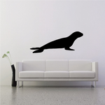Sea Lion Resting Decal