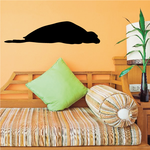 Snoozing Seal Decal