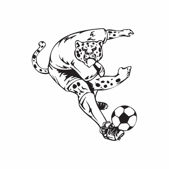 Detailed Soccer Wall Decal - Vinyl Decal - Car Decal - DC 050