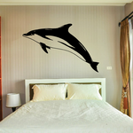 Hourglass Dolphin Decal