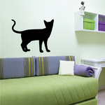 Siamese Cat Staring Back Decal