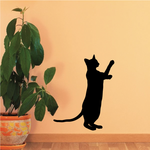 Siamese Cat Reaching Up Decal