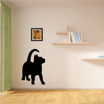 Kitten Looking Up Decal