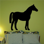 Anglo Norman Horse Standing Decal