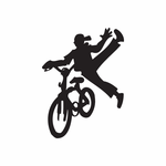 BMX Bike Wall Decal - Vinyl Decal - Car Decal - DC 023