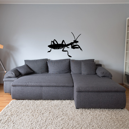 Stealthy Mantis Decal