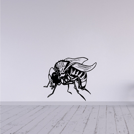 Resting Bot Fly Decal