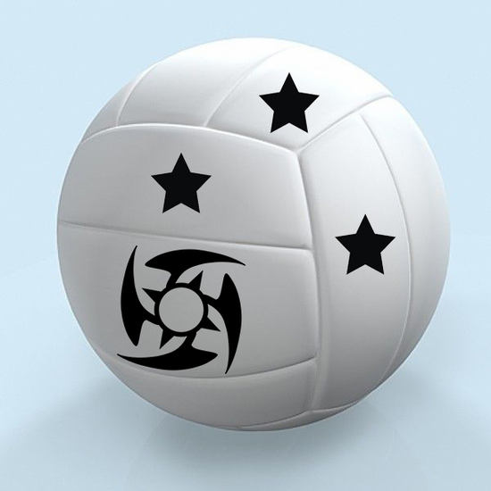 Customize your Soccer Balls with any item numbers or custom Image.