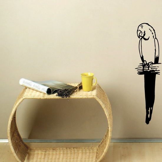Tilted Head Parrot Decal