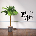 Staring Pig Decal