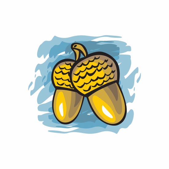 Thanksgiving Acorns Sticker