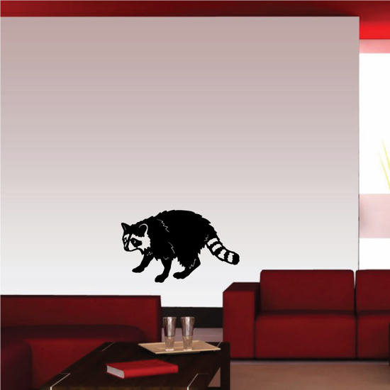 Raccoon Looking Decal