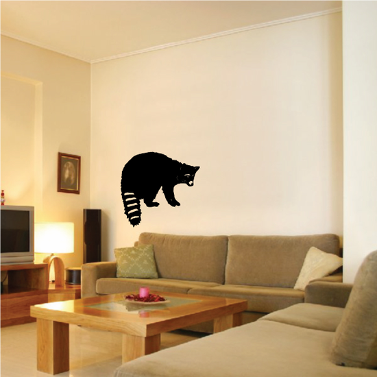 Raccoon Turning Decal