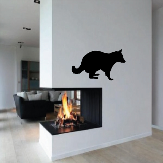 Raccoon Observing Decal