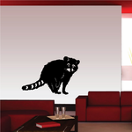 Raccoon Sitting and Watching Decal