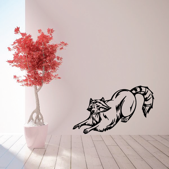 Stretching Raccoon Decal