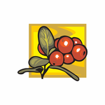 Cranberry Sticker