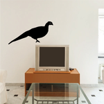 Pheasant Watching and Perched Decal