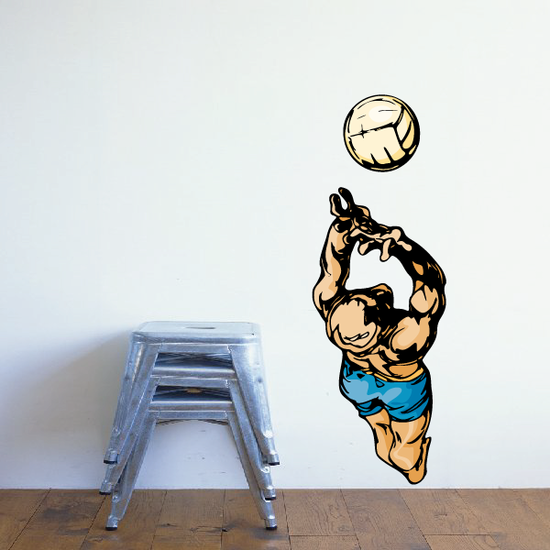 Volleyball Wall Decal - Vinyl Sticker - Car Sticker - Die Cut Sticker - CDSCOLOR112