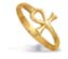 18k Key of Life Gold Ring