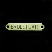 """2"""" Bridle Plate"""