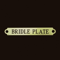 "2 1/2"" Bridle Plate"