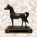 "Large Arabian ""Windflight"" Trophy - Log in for quantity pricing of 2 or more trophies."