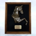 Show Horse Premium Shadow Box - Log in for quantity pricing of 2 or more trophies.