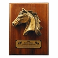 Paso Large Premium Plaque - Log in for quantity pricing of 2 or more trophies.