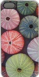 Sea Urchin Phone Case
