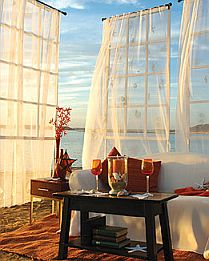 Coastal Seashell Curtains Valances