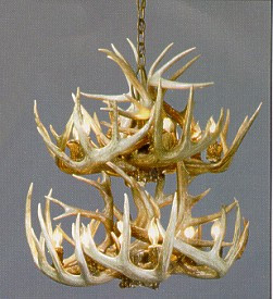 Whitetail-Two-Tiered-Ten-Lamp Antler Chandelier