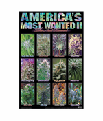 """Americas Most Wanted Weed Towel (28"""" x 58"""")"""