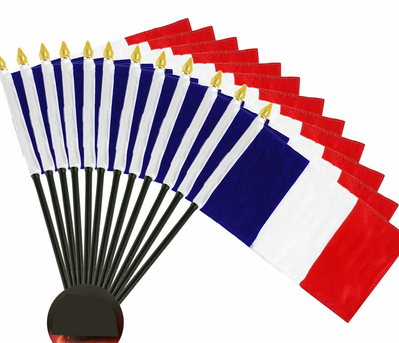 4x6 Inch France Flag (12 Pack)