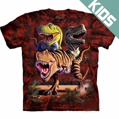 Kid's Dinosaur Big Face T-Shirt