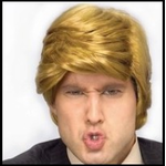 The Donald Trump Costume Wig