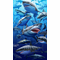 "Great White Shark Beach & Bath Towel 40"" x 70"""