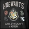 Official Hogwarts School of Witchcraft & Wizardry T-shirt