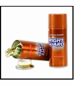Right Guard Deodorant Spray Diversion Safe