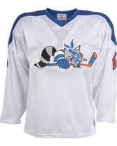 Adult Face Off Poly Mesh Hockey Jersey Teamwork 1524