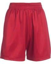 Women's Mesh Short Teamwork 4243